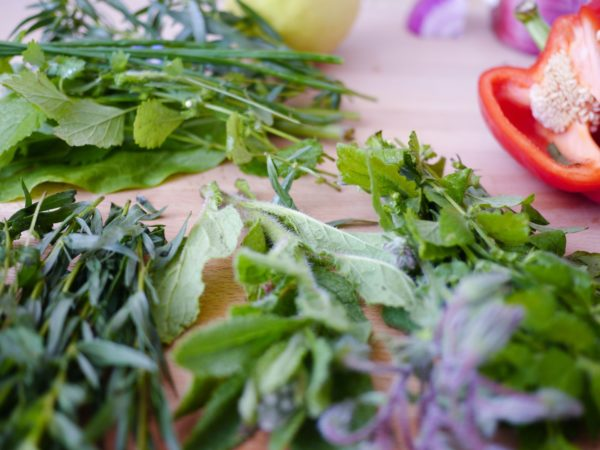 What you want to eat? Fresh-cut herbs and veggies.