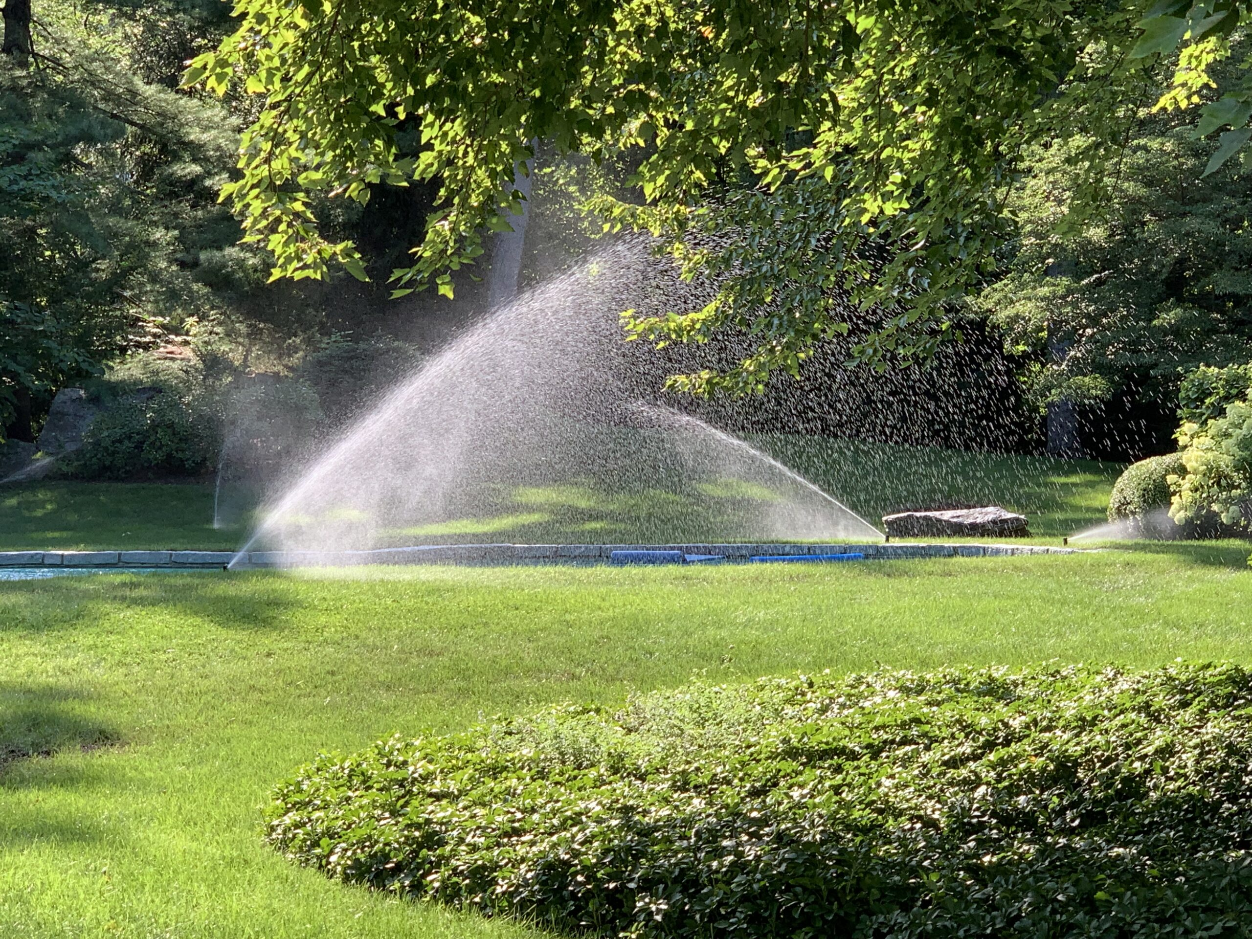 smart sprinklers run only when the weather is dry. They do not overwater
